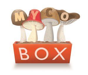 MycoBox logo