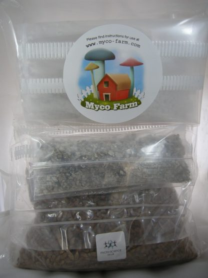 MycoFarm mushroom growing kit