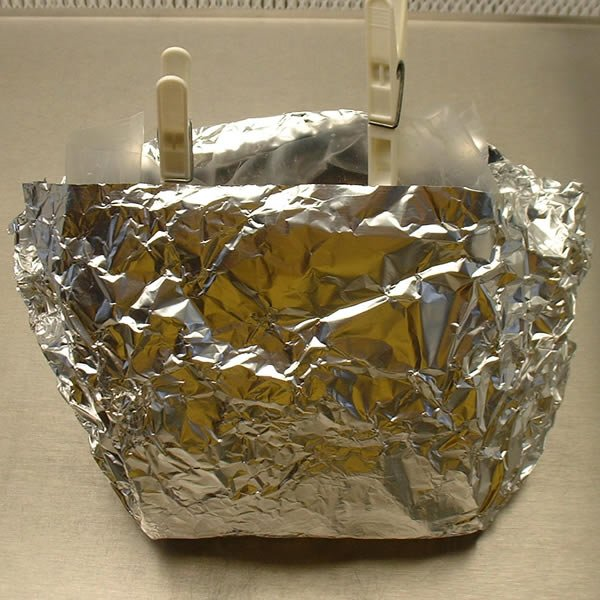 Cased bag in foil